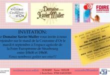 Invitation foire européenne 2016vs2