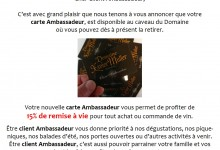 Carte Ambassadeur Website et facebook